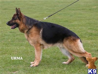 annbrenda Picture 3